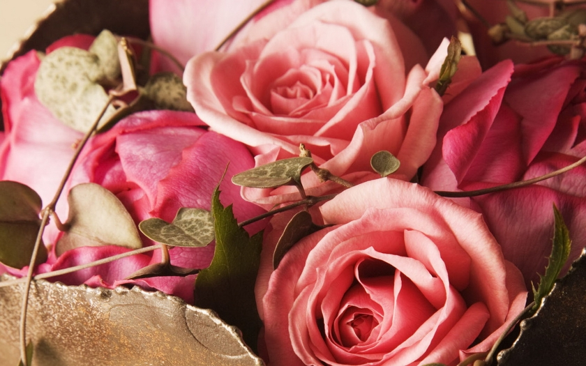 Nature_Flowers_Bouquet_of_pink_roses_025031_