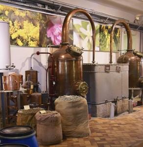 modern-attar-distillation-292x300